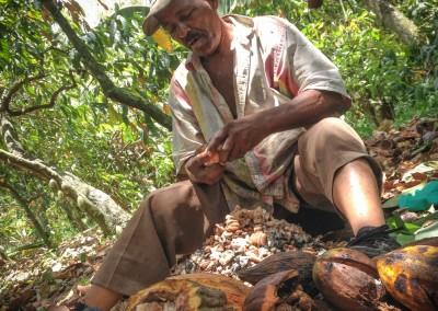 Cacao Farmer @Finca Barranca