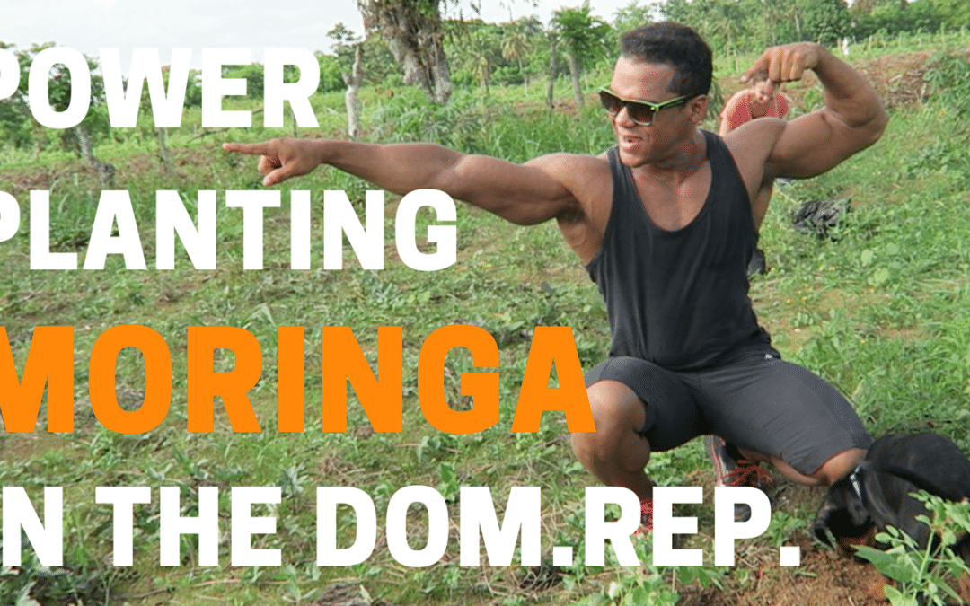 VLOG #3: Power Planting Moringa in the Dominican Republic!