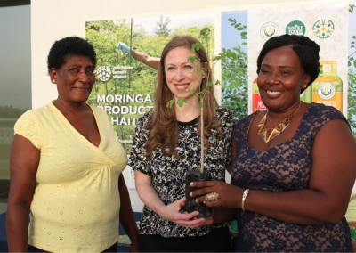 The Growing Dutchman Haiti moringa Chelsea Clinton