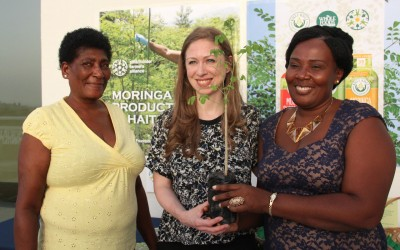 Clinton Foundation, Kuli Kuli & SFA Announce Partnership on Haiti Moringa Project