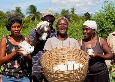 Haiti Cotton Project: Reintroducing Sustainable Cotton to Haiti