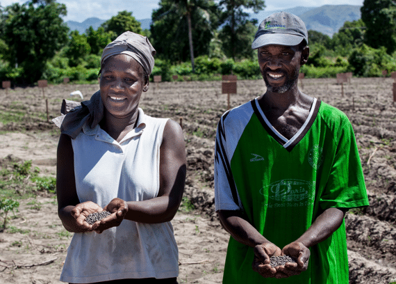 Haiti Cotton Project Launched: Reintroducing Sustainable Cotton to Haiti
