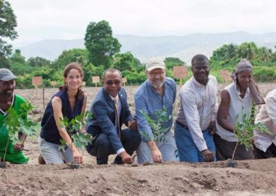 The Growing Dutchman - Haiti Cotton Project Smallholder sustainable cotton SFA Timberland field trials Gonaives