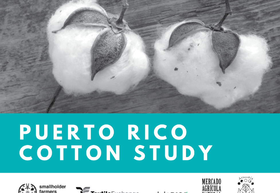 Two Down, And Here is the Third: Puerto Rico Cotton Study Announced!